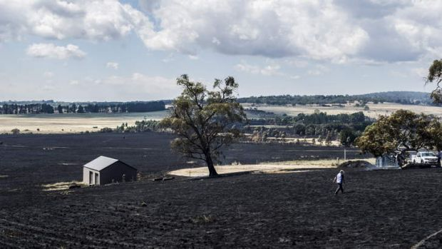 Burnt land on Hazeldell Road, pictured on Tuesday.