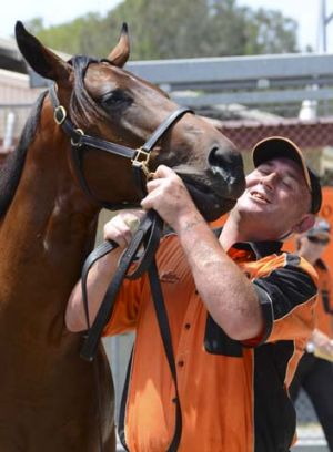 Cool it ... Coolmore Stud has paid $1.35 million for a Fastnet Rock colt out of Smart Company.