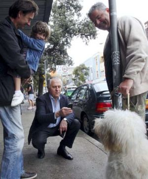 Going to the dogs ... Malcolm Turnbull takes photos of dogs on his campaign rounds in Bondi.