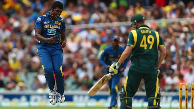 Jump for joy … Thisara Perera celebrates the wicket of Steven Smith in Adelaide on Sunday. Sri Lanka went on to ...