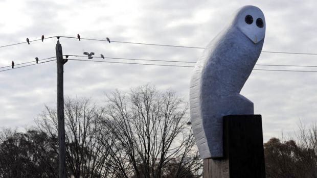 Something to like? The giant owl sculpture, on the corner of Belconnen Way and Benjamin Way.