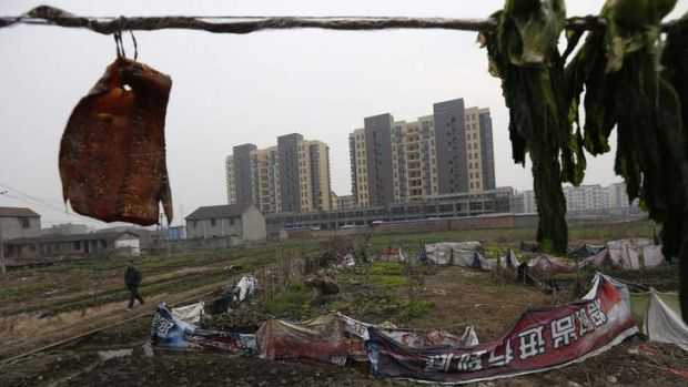 Going ... a resident walks past a vegetable patch in a village that will soon be demolished, on the outskirts of Jiaxing ...
