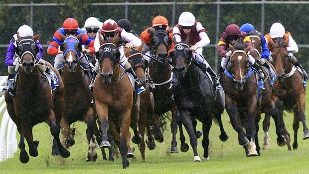 Touch of class … Campania, far right, white cap, gets ready to make her run from the rear.