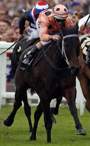 Superstar … Black Caviar wins at Ascot last year.