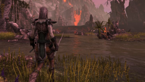 The Elder Scrolls Online promises to open up the entirety of the immense continent of Tamriel, allowing players to ...