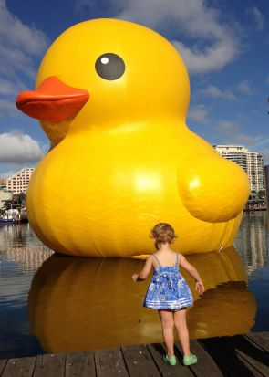 Violet and the duck. Photo: Sandra K. Eckersley.