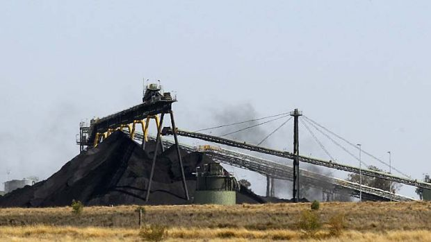 "Mistakes in its forestry offsets were ""highly misleading and deceptive"" ... Whitehaven Coal mine outside Narrabri."