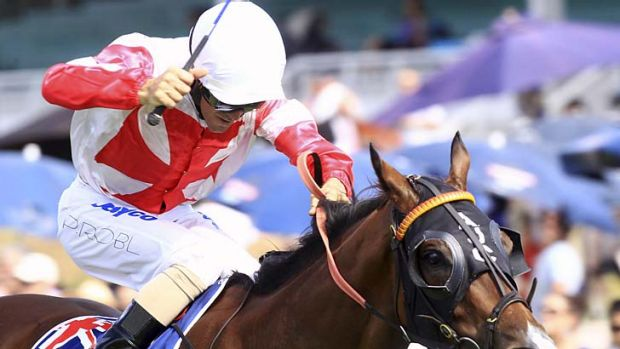 Masterstroke … Peter Robl was rewarded for his brave front-running tactics on Shadows In The Sun with victory in ...