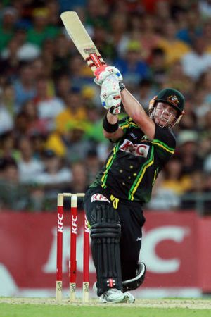 Hitting out: David Warner.