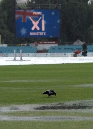 Only the magpies enjoyed last year's Prime Minister's XI.
