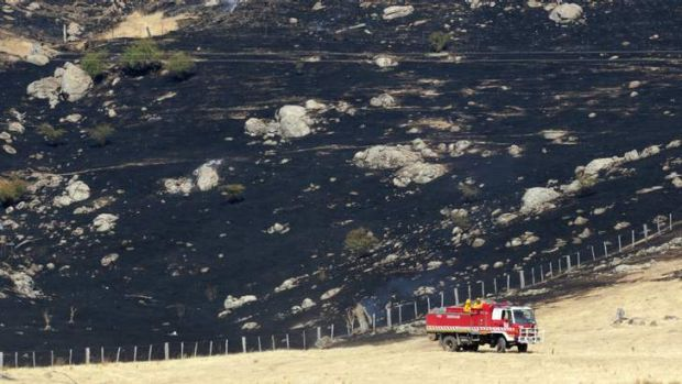 The fire has burnt through more than 2000 hectares.