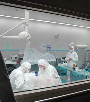 Forensic dentists working in the homicide room.
