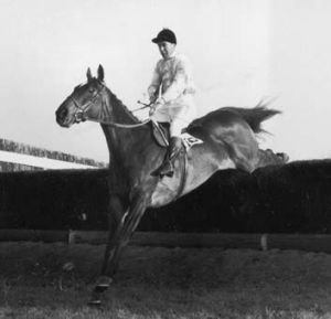 So near ... Dick Francis on Devon Loch, which collapsed in the 1956 Grand National.