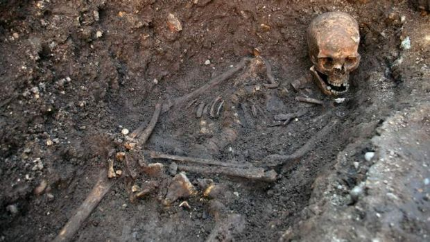 The skeleton of Richard III is seen in a trench at the Grey Friars excavation site in Leicester, central England.