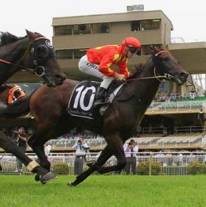 Speed machine ... Jay Ford drives rising star Happy Galaxy to victory at Warwick Farm on Saturday.