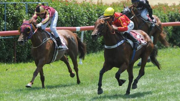 Peter Robl aboard Two Piece, right, grabs a win a Queanbeyan on Tuesday.