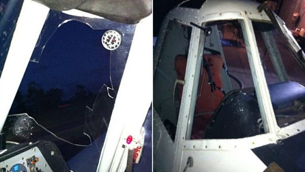 The damage made when a bat collided with Josh Liddle's plane.