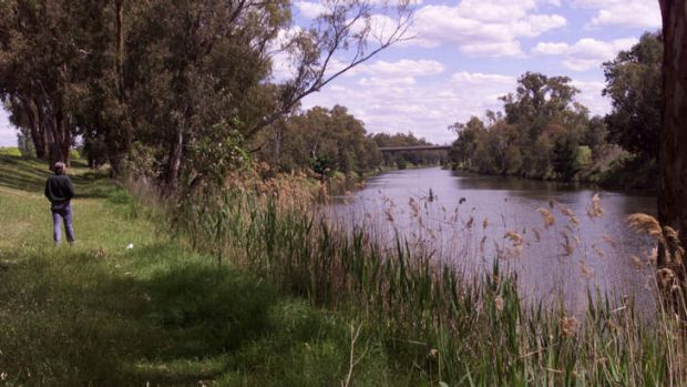 Party split ... plans to pump water from Macquarie River has triggered an outcry.