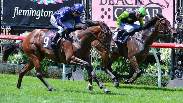 Diamond sparkle: Casquets (left) beats Annenberg and stakes her claim for next Saturday's Blue Diamond.