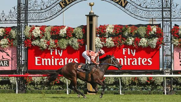 Hand canter … Luke Nolen eases Black Caviar to the line on Saturday. She could return to Flemington for the ...