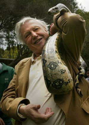 Sir David Attenborough's 2013 Australian tour is expected to sell out quickly