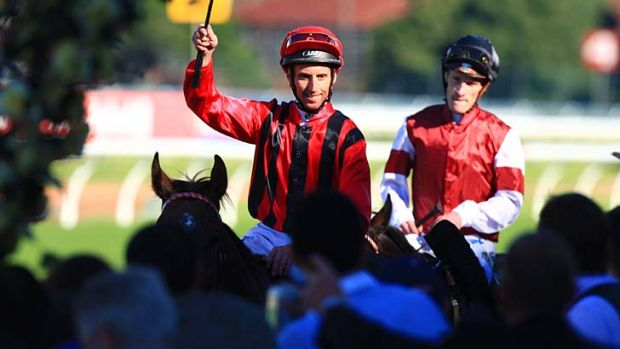 Back on board  ... Tulloch Lodge's No.1 rider Nash Rawiller and Laser Hawk reunite in Saturday?s $250,000 Apollo Stakes ...