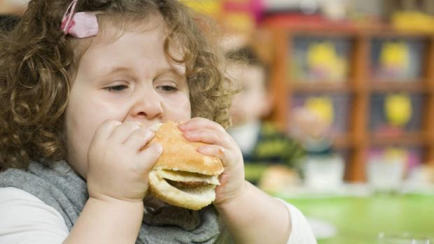 Super-size ... a report from the Cancer Council NSW found 90 per cent of children's meals exceeded recommended limits of ...
