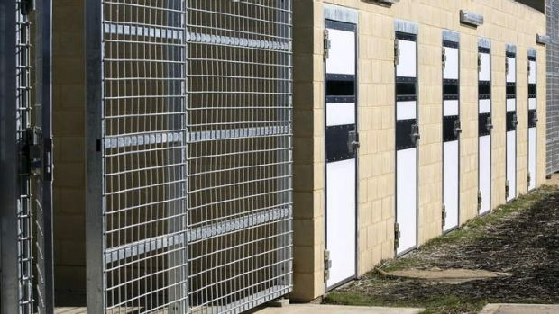 Holding cells at the ACT's Alexander Maconochie Centre.