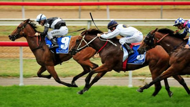 Nathan Berry, aboard Everage, wins at Canberra yesterday.