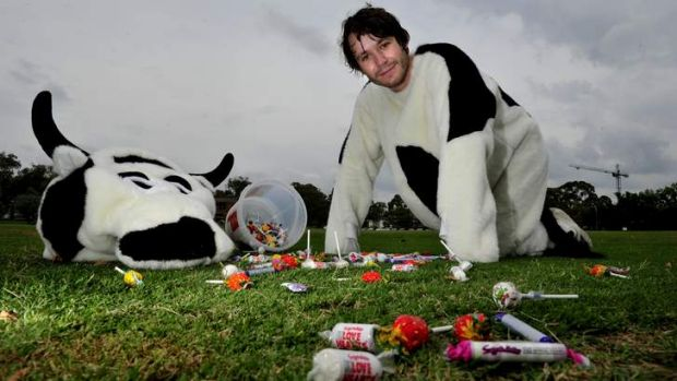 Sam Guthrie gets paid to dress up as a cow and acts as the ANU student centre's promotional mascot.
