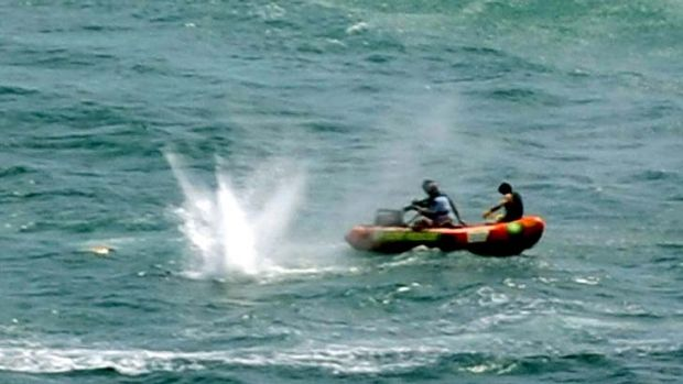Muriwai Beach ... police shoot at a shark as they attempt to retrieve a body.