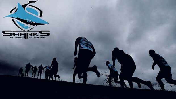 Dark days: The investigation into Cronulla has focused on the 2011 season and the involvement of sports scientist ...