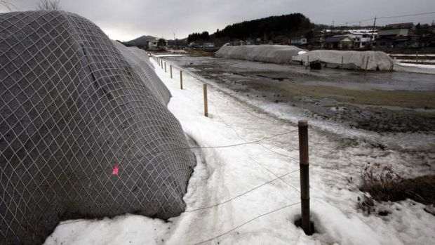 Legacy: piles of radiation-contaminated waste  in the abandoned town of Iitate, near the Fukushima Dai-ichi nuclear plant.