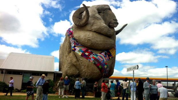 The Knitters Guild of NSW have knitted a 30m long woolen scarf for the big merino in Goulburn.