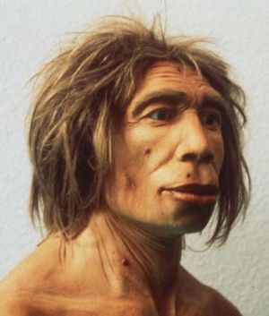 Gone: Neanderthal man struggled socially.