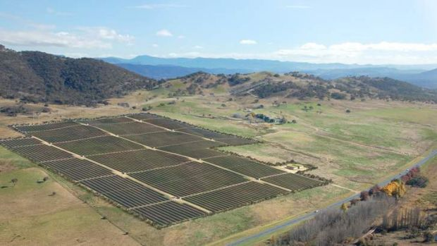 The government has attracted another potential solar farm to the territory.