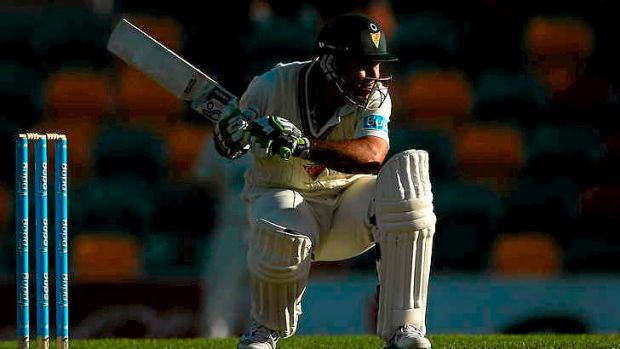The twilight of his career ... Ricky Ponting is the highest runscorer in Sheffield Shield cricket this season.