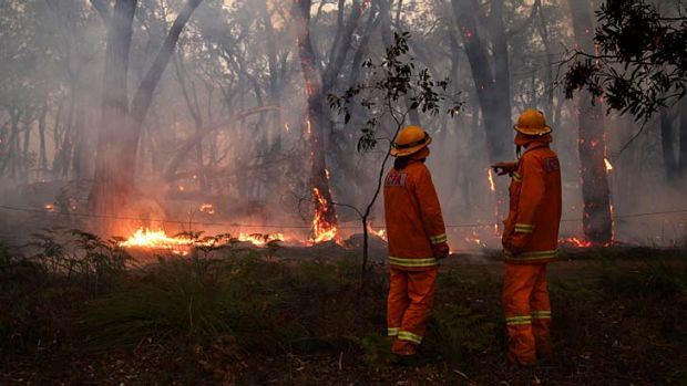 Firefighters assess the fire at Dereel.