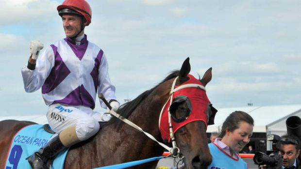 Change of riders: Glen Boss, who rode Ocean Park to victory in the Cox Plate, will be replaced by Johnny Murtagh in Dubai.