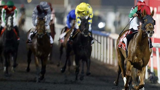Class act: Animal Kingdom wins the Dubai World Cup.