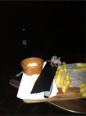 A woman posted this photo on Facebook, which she said showed vermin eating her grand-daughter's chips inside the ...