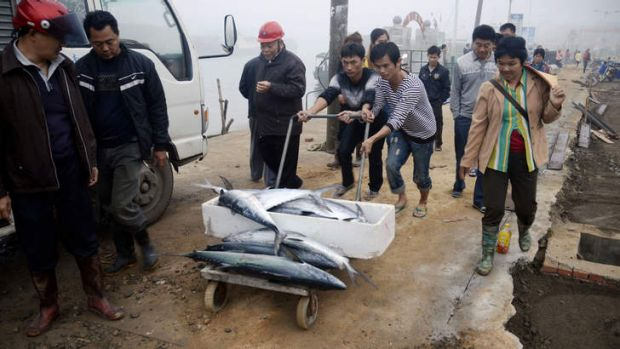 The ones that got away: Chinese fishing vessels have been accused of taking a huge global catch.