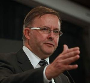 Minister for Infrastructure and Transport, Anthony Albanese.