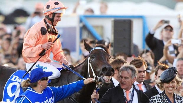 Proud moment: Luke Nolen leads Black Caviar back to scale after the mare's historic victory in the TJ Stakes.