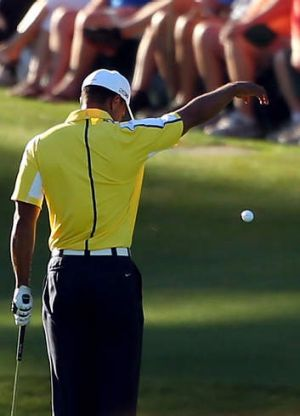 Tiger Woods drops his ball on the 15th hole.