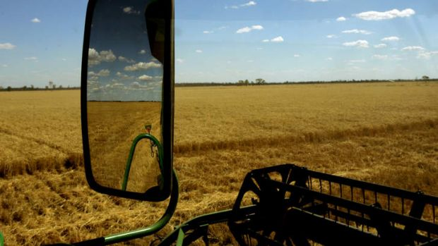 Prospects for wheat and other agricultural commodities look healthy.