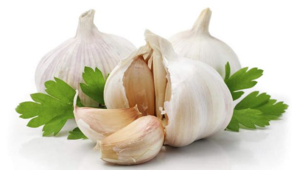 More evidence required: scientists hesitate to endorse garlic as a cold fighter on the basis of a single study.