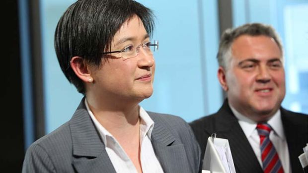 Finance Minister Penny Wong says the government has to make ''responsible decisions''.