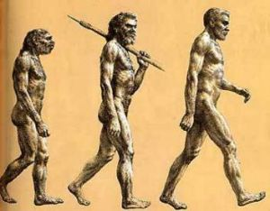 Neanderthal, cro-magnon, modern man may have shared words which remain to this day.