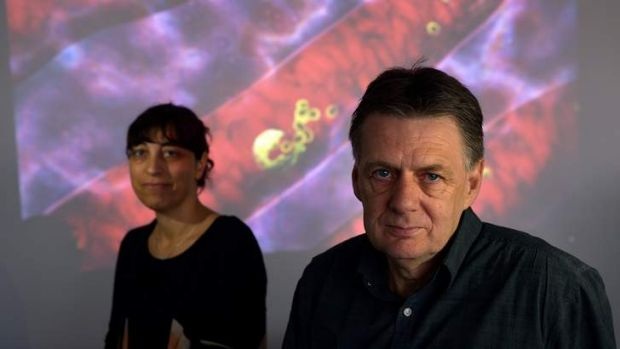 A breakthrough by Neta Regev-Rudzki and Alan Cowman could help develop new antimalarials.